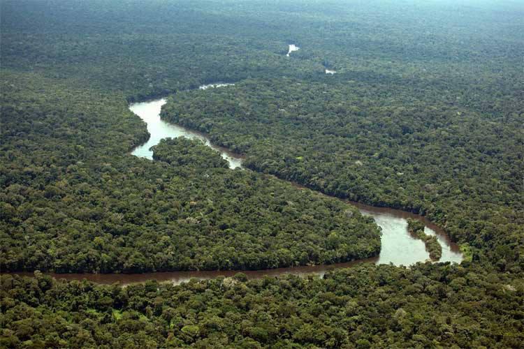 Photo of Justiça suspende decreto de Temer que extingue reserva na Amazônia