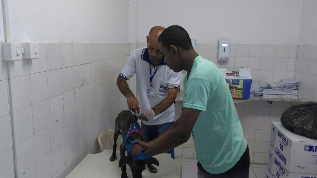 Photo of Vacinação antirrábica para cães e gatos no Posto de Saúde da Santa Cruz