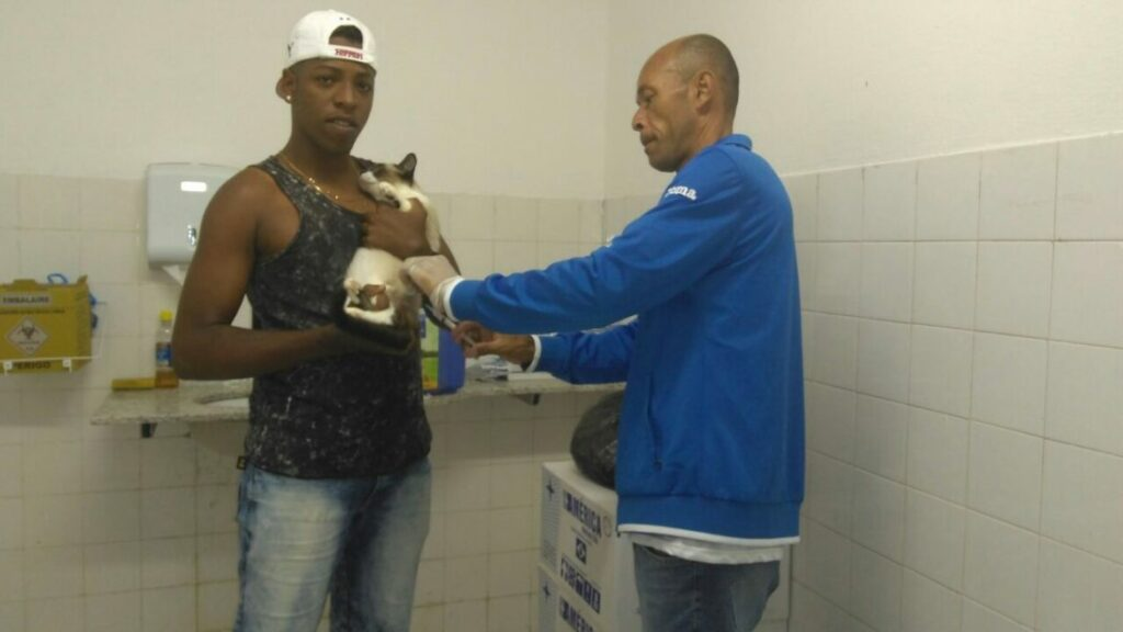 Photo of Prefeitura inicia campanha de vacinaça antirrábica para cães e gatos em Salvador