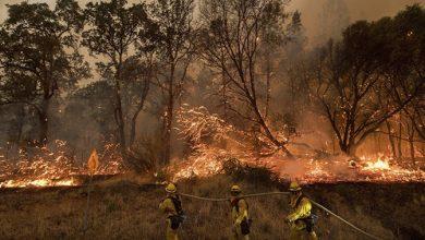 Número de mortos por incêndios na Califórnia sobe para 24