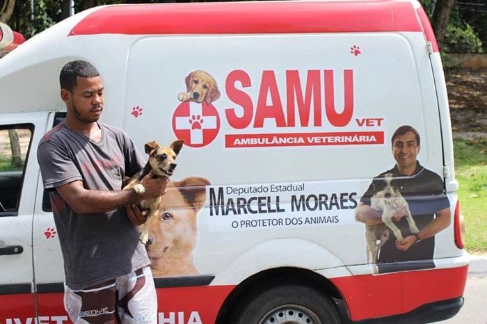 Solidariedade; O cachorro que foi atingido no olho é levado para emergência para fazer tratamento.