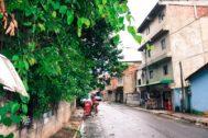 Photo of Moradores reclamam da falta de poda de árvores no bairro da Santa Cruz