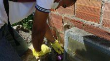 Photo of Salvador registra redução de casos por leptospirose
