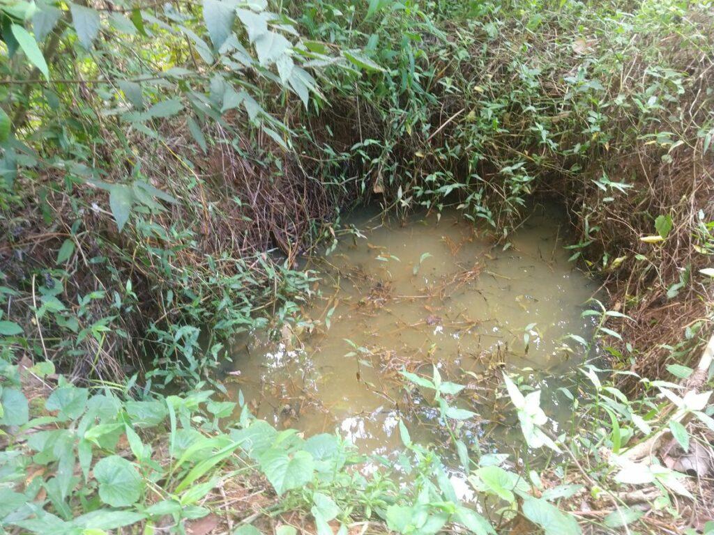 Photo of Moradores vizinhos do Parque da Cidade denunciam buracos como possível criadouro do mosquito Aedes Aegypti