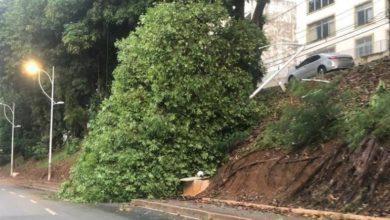 Photo of MUITA CHUVA! Árvore cai na Avenida Centenário na madrugada desta segunda (20); tempo continua nublado