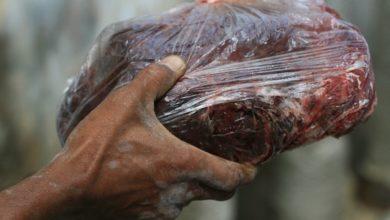 Photo of Moradores que comeram carne de baleia morta correm risco de intoxicação