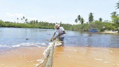 Photo of Cerca de 43 mil pescadores foram impactados por óleo nas praias