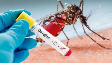 Photo of Brasil registra segundo maior número de mortes por dengue em 21 anos