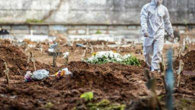 Photo of OMS alerta que casos do Covid-19 crescem cerca de 10% por semana no Brasil